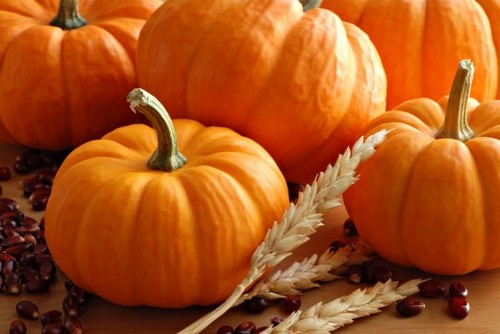 Pumpkins-autumn-35540966-500-334